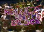 New Kids on the Block - image 1