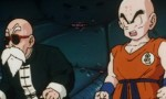 Dragon Ball Z - Film 02 - image 12