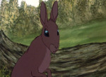 La Garenne de Watership Down - image 6
