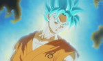 Dragon Ball Super - image 15