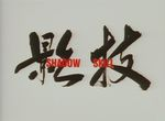 Shadow Skill (OAV) - image 1